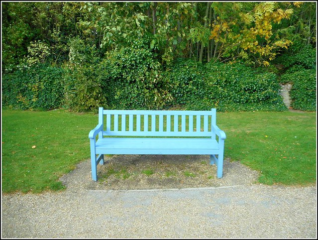 Solitary Park Bench ..