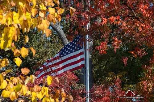 american flag oldglory autumn fall color california trees leaves oakhurst sierra nevada mountains oaks stars stripes red white blue darv darvin atkeson yosemitelandscapescom yosemite landscapes