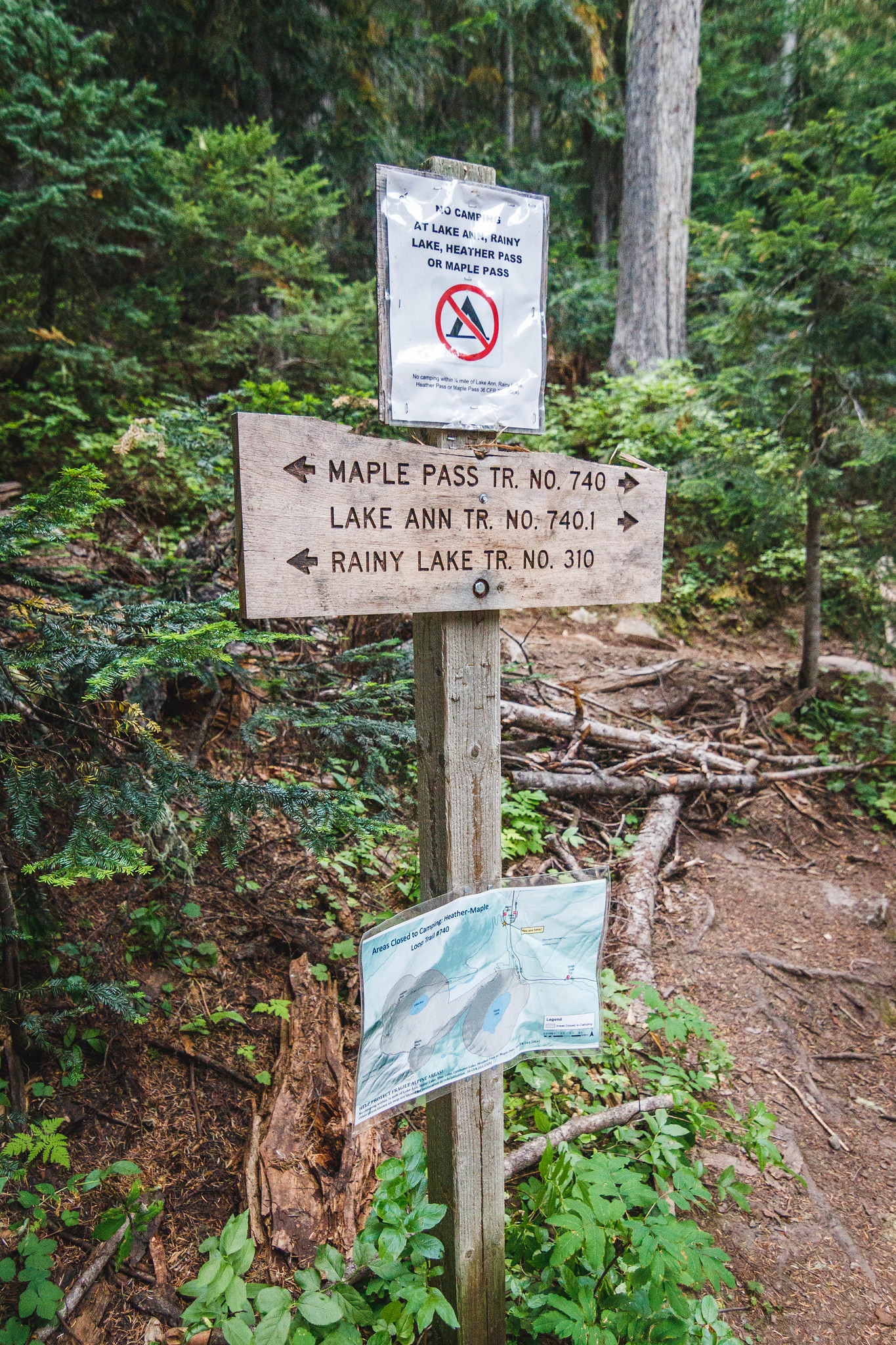 Maple Pass Loop Trail this way