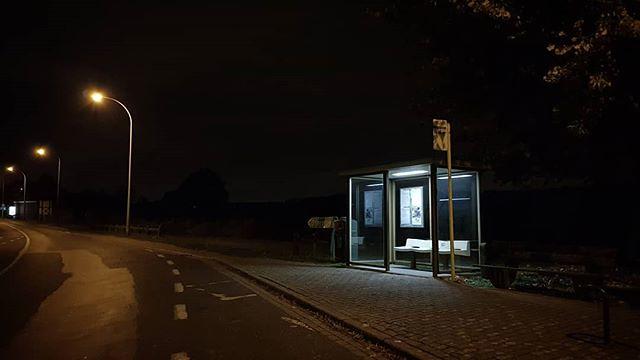 Halloween In Belgie.Bus Stop Moorsel Belgium Busstop Night Hallowee