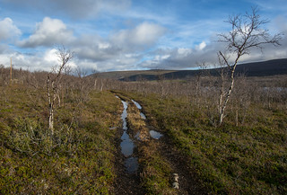 DSC_9319 | by adventurelandlapland