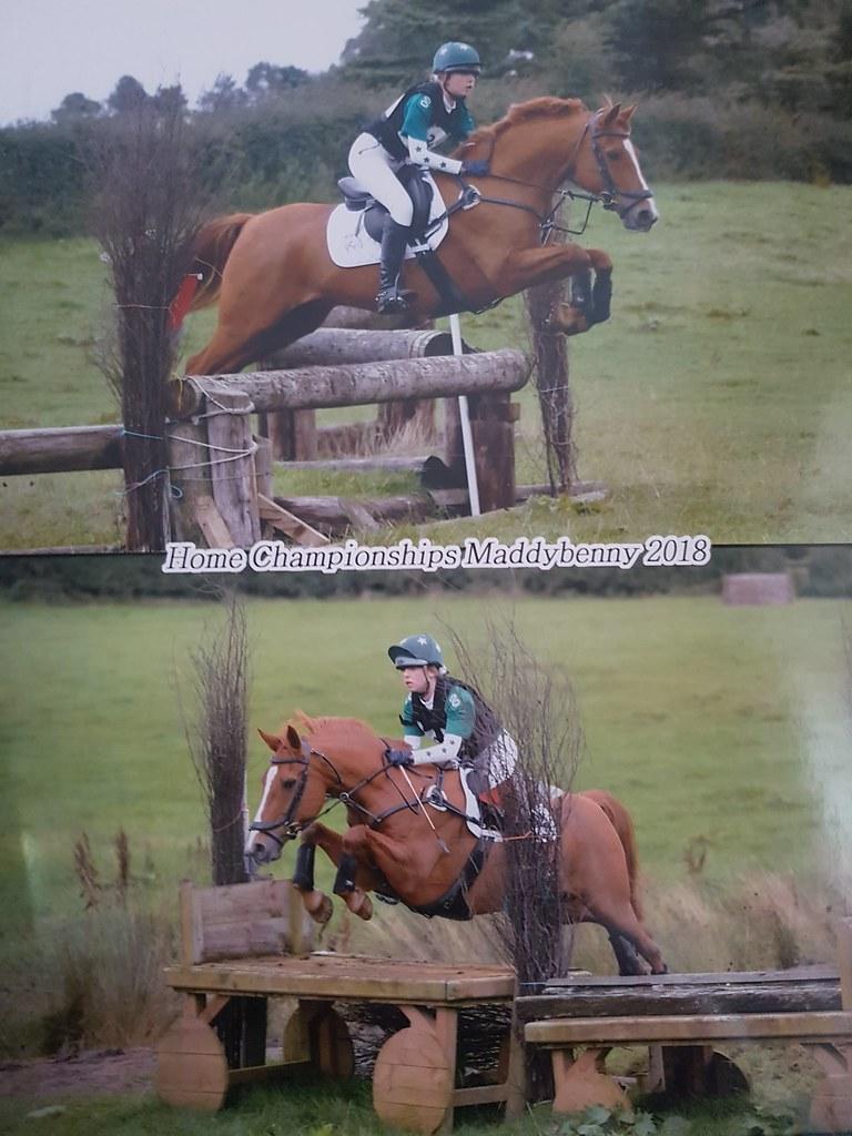 Equestrian Update