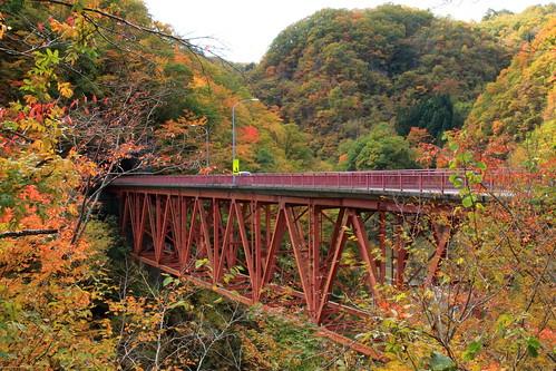 autumn autumnleaves autumncolours autumncolors fall fallcolors fallenleaves tree bridge red nature natural 岩手県 久慈市 長内渓流