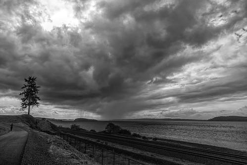 clouds sky dramatic pugetsound tracks trail bw rain walk ketronisland chambersbay tree