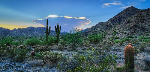 arizona buckeye clouds cloudscape cloudy desert kenmickelphotography landscape landscapedesert outdoors skylineregionalpark sunsets nature photography sunset unitedstates us