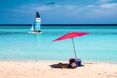 Beach Cutlery