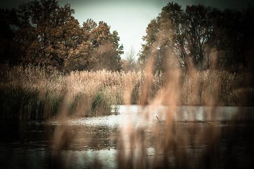water autumn river nature ukraine travel kremenchuk