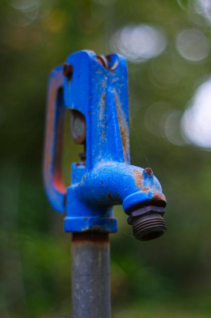 blue spigot