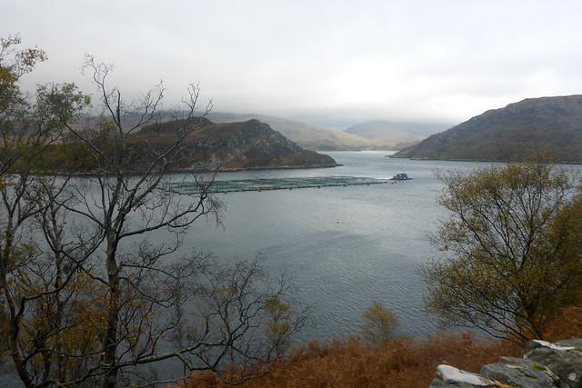 Loch a' Chàirn Bhàin from the B869