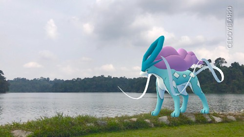 245 Suicune (position=right)