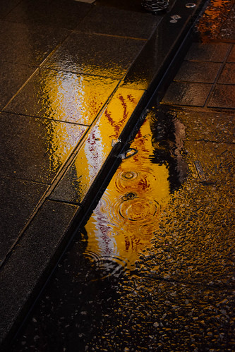 Reflections under the rain | by Hachimaki123