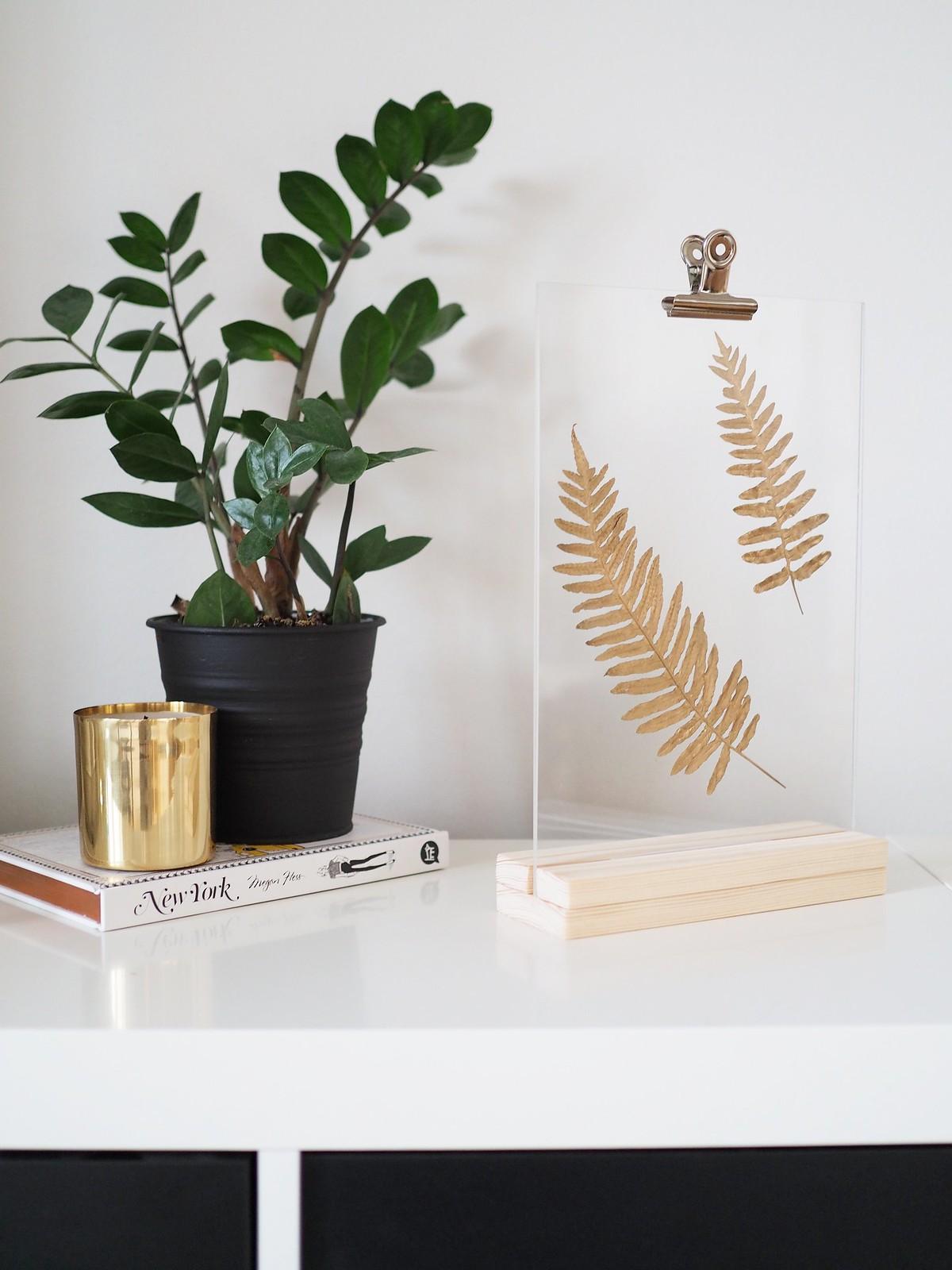 kasvi-kultaus