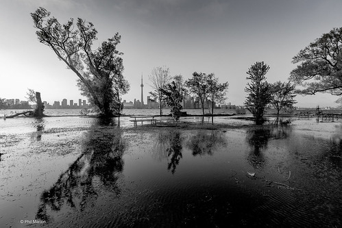 Toronto Island flood of 2017 | by Phil Marion (173 million views - THANKS)