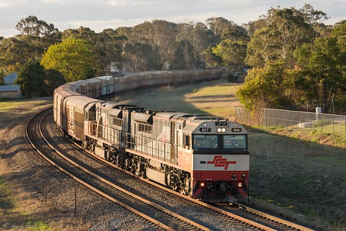 sct014 sct004 sctclass emd diesel downeredi gt46ace sctlogistics freighttrain bm9 6bm9 bargo
