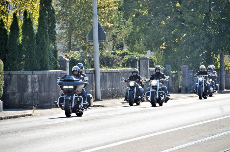 Harley Davidson HESO Tag 30.09 (30)