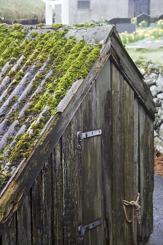 Mossy shed   by olikristinn