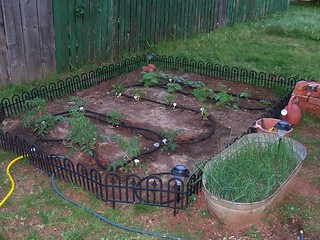 How Does Donna's Garden Grow? | by programwitch
