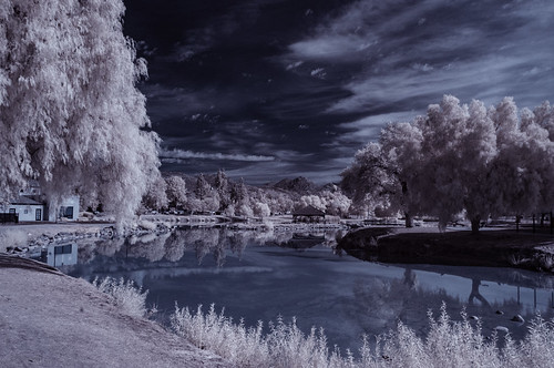 ir infrared infraredphotography convertedinfraredcamera clouds water lindolake nature surreal trees composition reflections
