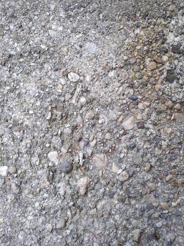 Concrete texture #20