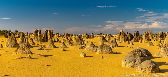 An alien landscape...