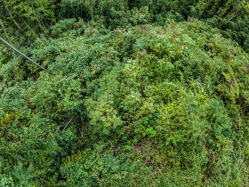 goprohero7 風景 景色 自然 landscape nature snap 岡山 okayama 日本 japan ハイアングル highangle