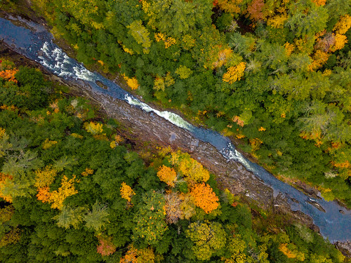 quechee vermont unitedstates us mavicpro quecheegorge fallfoliage foliage trees river water
