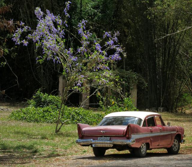 CUBA Cienfuegos II