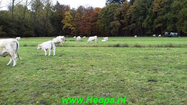 2018-11-07               Baarn SOP           25 Km  (56)