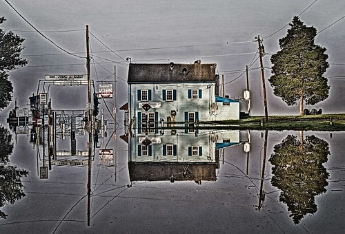 Fog and Flood: Reflections at Whites Ferry (4)