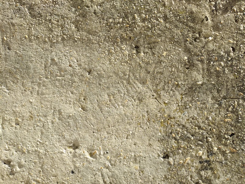 Concrete wall texture #02