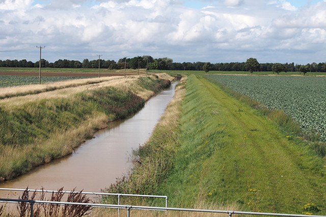 Drainage dithc near Leverton