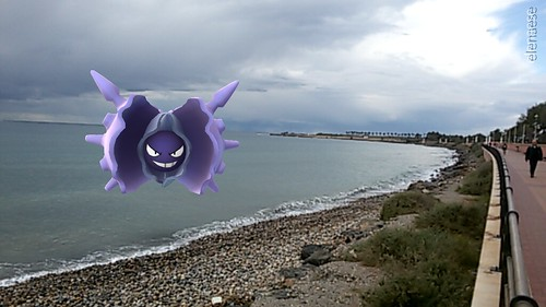 091 cloyster