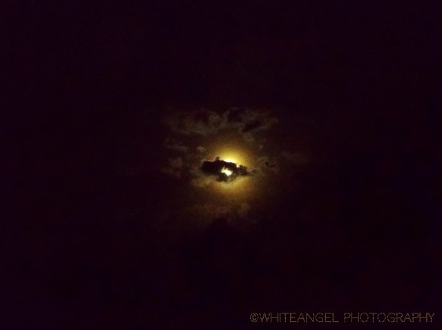 FullMoon throughout the clouds _ Ph. WhiteANGEL