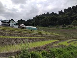 one of the many paddy fields | by ric03uec