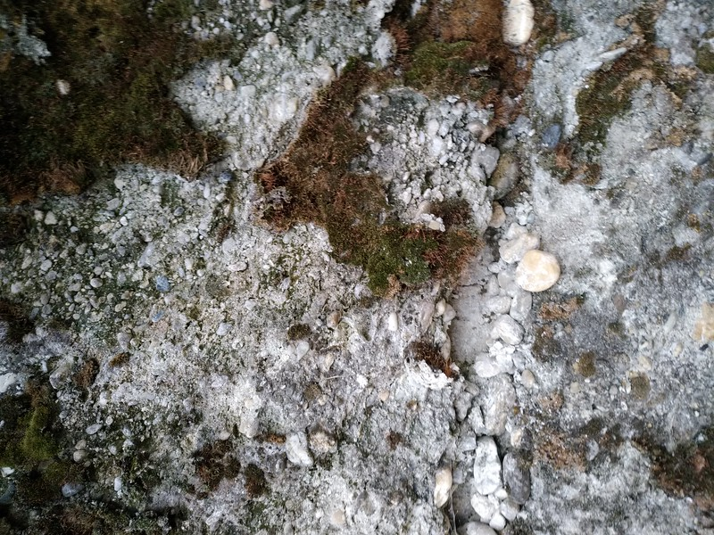 Concrete texture #04