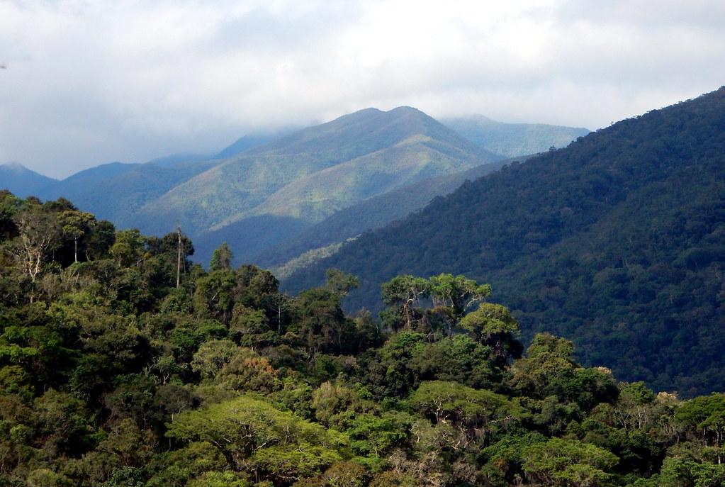 Parque Nacional da Serra da Bocaina, SP/RJ