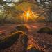 Puy des Goules by vanregemoorter