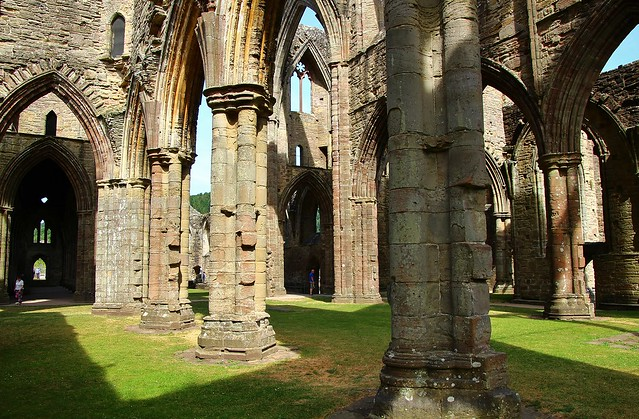 Sunlight and shadows in Tintern Abbey
