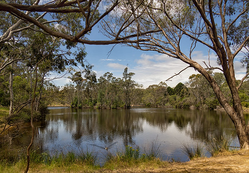 adelaide australia sa southaustralia water lake reflection tree sky afternoon spring cloud olympusem10 olympus olympusomd belairnationalpark microfourthirds lumix scene foliage nature flora landscape