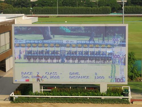 ロイヤルバンコクスポーツクラブの7レース