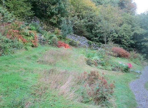 Dove Cottage back garden 1