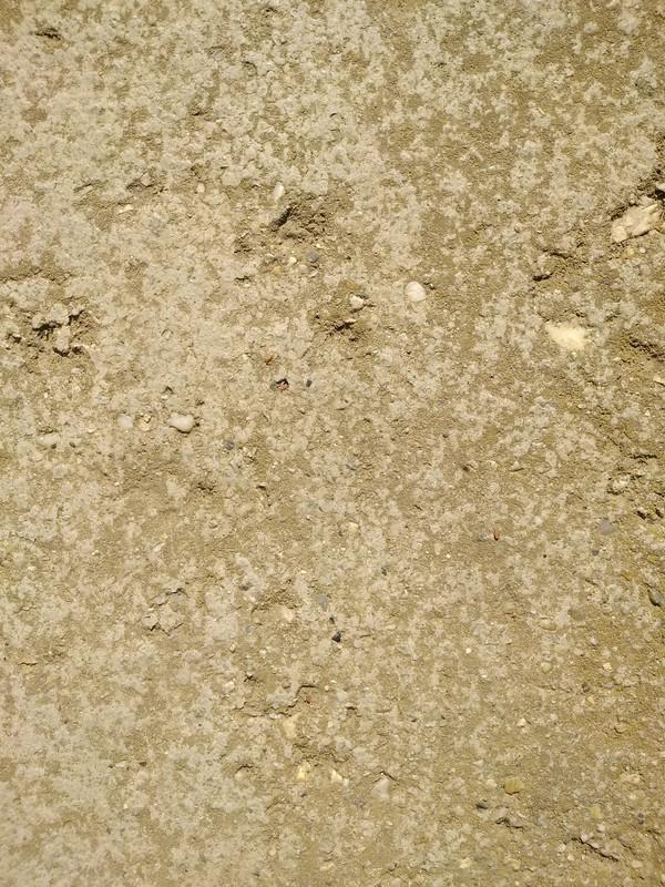 Concrete texture #23