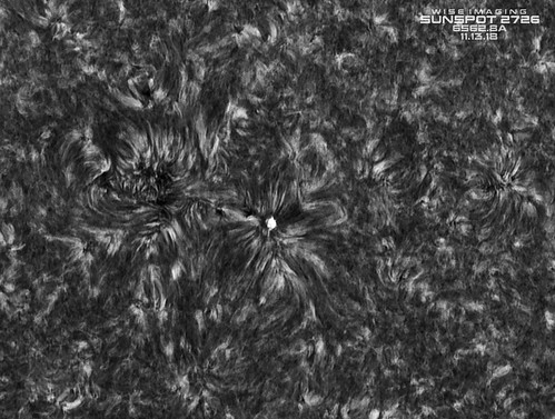 Sunspot_2726_HA_150mm_Inverted_BW_11132018 | by Mwise1023