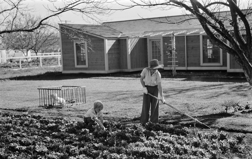 For Three Quarters Of California >> New Found Land El Monte Federal Subsistence Homesteads In Flickr