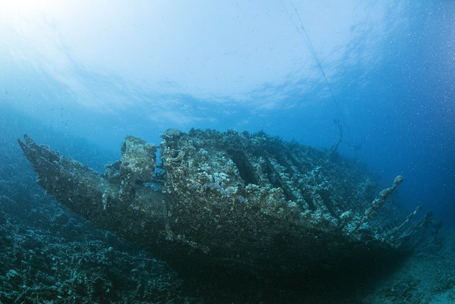 Carnatic Wreck, Northern Red Sea