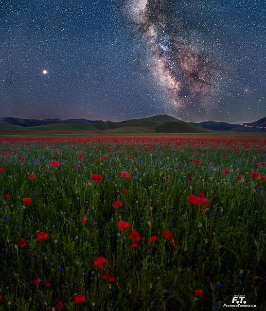 Via Lattea / Milky Way 2018: Castelluccio di Norcia