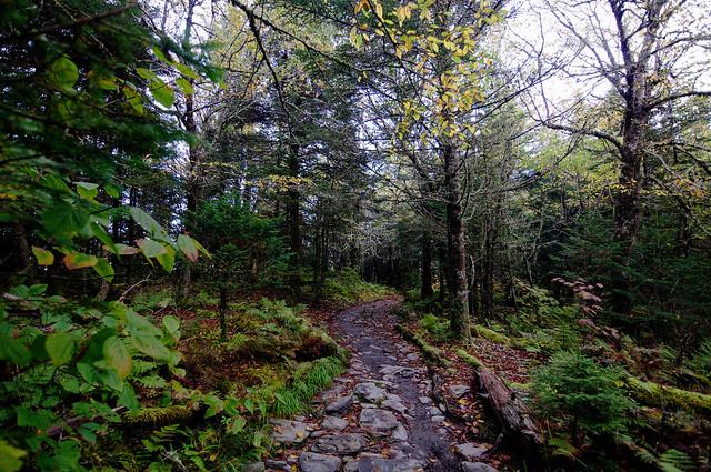 The applachian trail