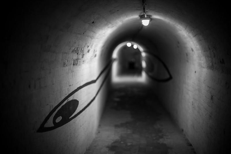 Caponier tunnel
