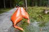 2018.09.22 - KAT-ZUG II Spittal Übung Reintal Hochwasserschutz-60.jpg