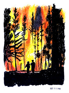 Forest Fire | by vinegar22